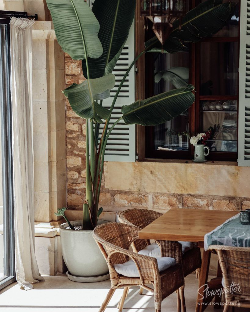 Cal Reiet Holistic Sanctuary In Mallorca With A Healthy Food (15)