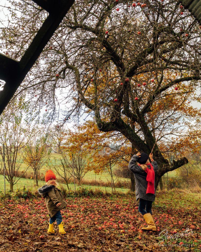 Dom na Wzgórzu Paproć dzieci bawiące się w ogrodzie Slowspotter