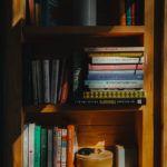 Bookworm cabin domek gdzie można poczytać po środku lasu