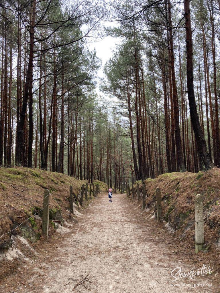 Slowinski Park Narodowy spacer nad morze Slowspotter 7