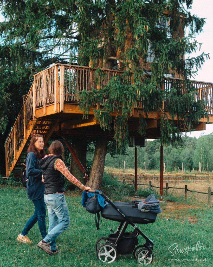 Modry Ganek domek na drzewie odwiedziny Slowspotter