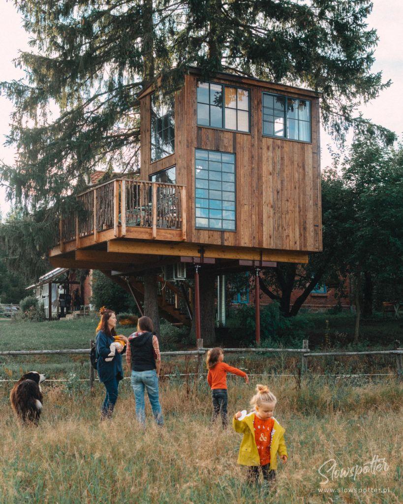 Modry Ganek domek na drzewie wizyta Slowspotter