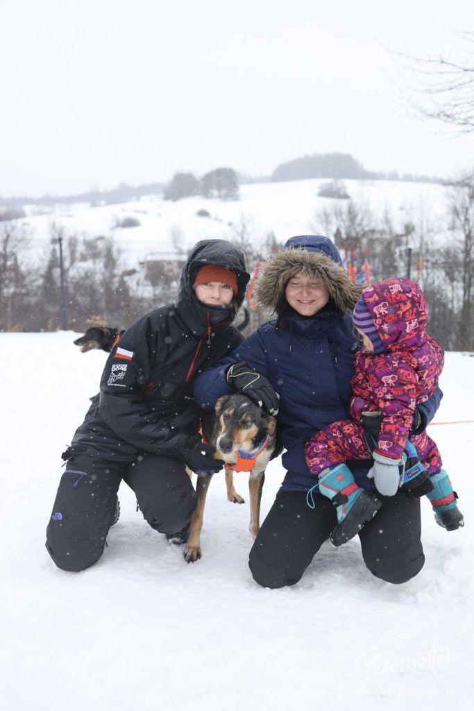 Psy Na Biegunach Lokalna Wycieczka Slowspotter psy