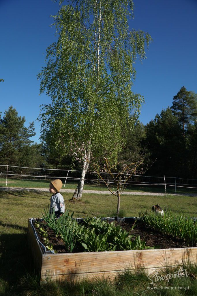 Zagroda Kuwasy Podlasie Pensjonat Slowspotter ogródek