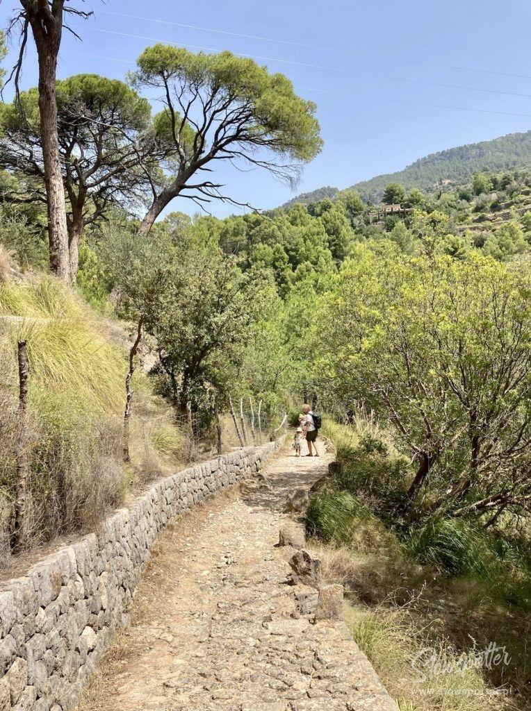 Savastis Mallorca Slowspotter Experience Droga3